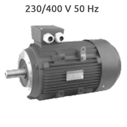 Motor Trifasico UMEB Ex II 3000 RPM 15 CV
