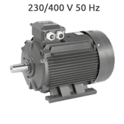 6P-IE2-MSL132M1 Motor 4 KW (5,5 CV) 1000 RPM Trifasico IE2 CEMER