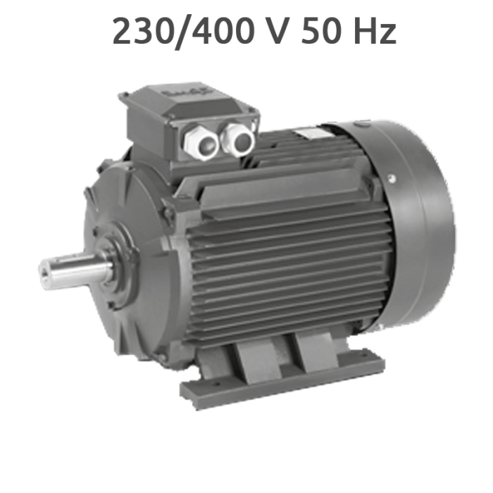 6P-IE2-MS160L Motor 11 KW (15 CV) 1000 RPM Trifasico IE2 CEMER