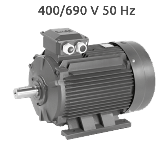 4P-IE2-EG225S Motor 50 CV 1500 RPM IE2 400/690V
