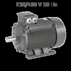 2P-IE2-EG180M Motor 22 KW (30 CV) 3000 RPM Trifasico IE2 de Fundición CEMER