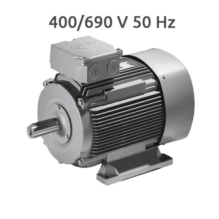 K21R 100 LX 8-4 Motor 2 Velocidades 750/1500 RPM 1,36/2,0 KW (1.0/1,52 CV) Trifasico VEM 400/690V