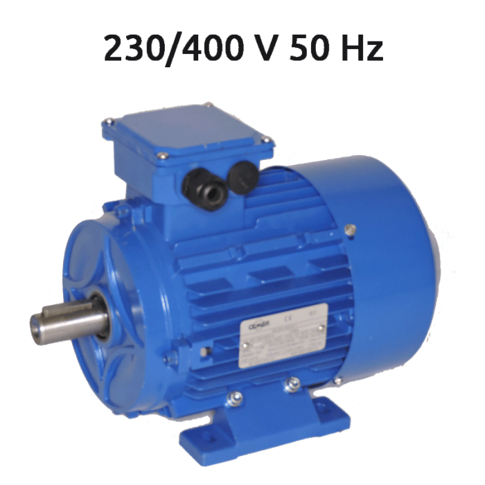 2P-IE2-MS90S Motor trifasico 2 CV 3000 rpm IE2