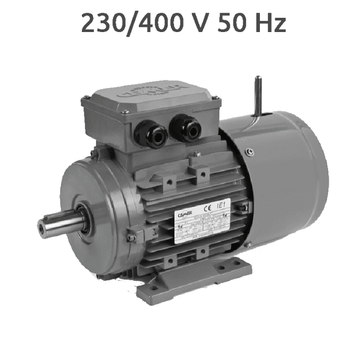6P-MSEF100L - Motor con electrofreno 2 CV 1000 rpm