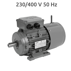 2P-MSEF100L2 - Motor con electrofreno 5,5 Cv 3000 rpm