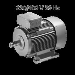 K2 1R 132S 4-2 Motor 2 Velocidades 1500/3000 rpm 4,9/5,9 KW (6,6/8,0 CV) Trifasico VEM