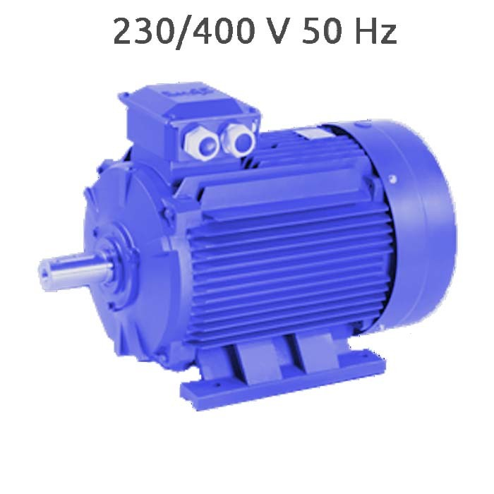 4P-MS112M Motor trifasico 5,5 CV 1500 RPM IE1