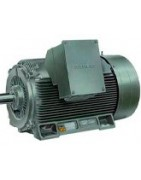 Motores trifásicos asíncronos 3000 rpm alta eficiencia IE2 51 a 100 CV