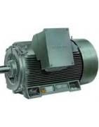 Motores trifasicos de 3000 rpm de alta eficiencia IE2 de más de 100CV