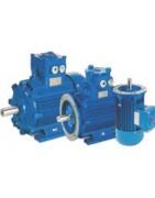 motor 6 Polos 1000 rpm EX II