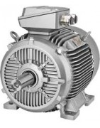 motor 8 Polos 750 rpm EX II