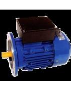 Motores monofásicos de alto par de arranque, 3000 RPM hasta 5 CV